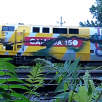 Fuck Canada: VIA Rail celebration of colonial genocide covered in the colours of green anarchy